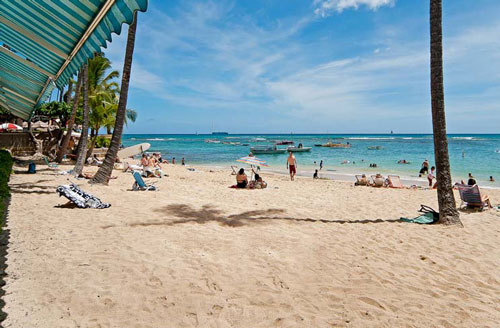 Colony Surf beachfront rentals