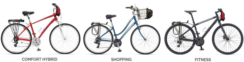 Bicycle rentals in Waikiki